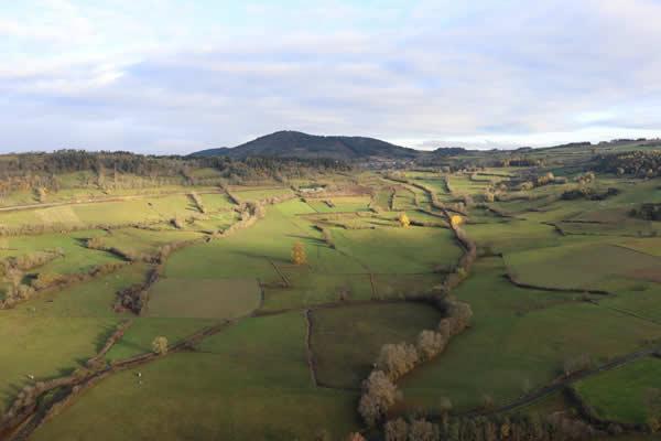 La polyculture vous offre un joli paysage